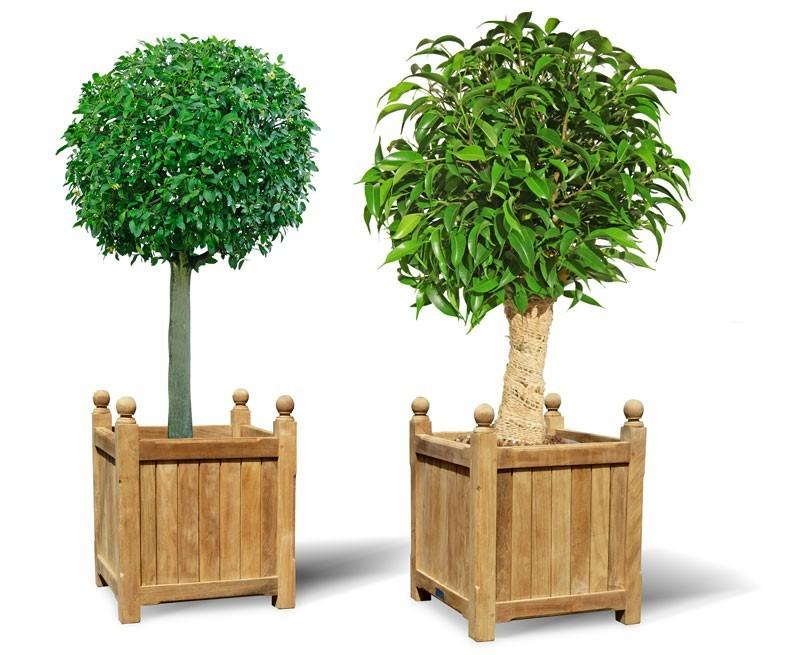 Set of 2 Large Garden Planters, Versailles Planters