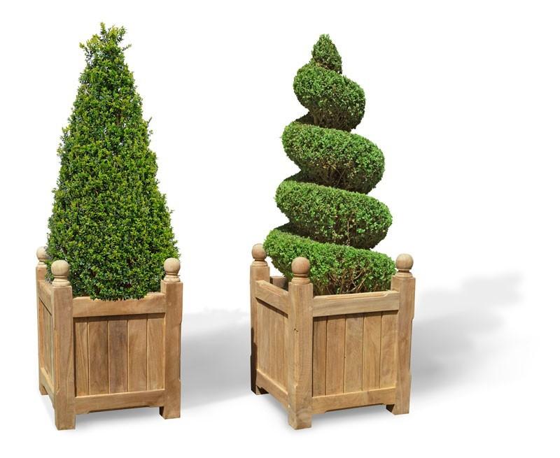 Set of 2 Standard Versailles Teak Garden Planters